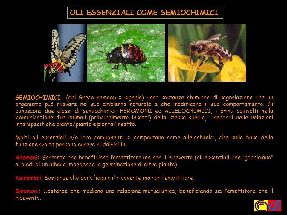 Gli oli essenziali sono di norma complesse miscele di decine di differenti composti organici volatili, quali idrocarburi, alcoli, acidi, esteri, aldeidi, chetoni, eteri, fenoli, composti azotati e solforati, ecc.