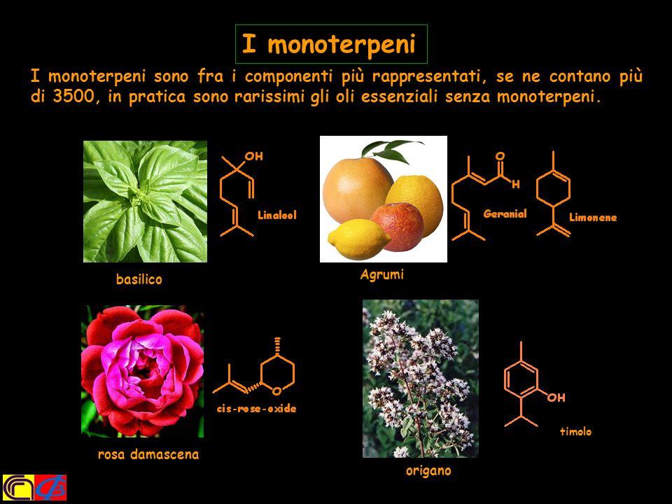 Oltre ai terpenoidi, molti composti fenolici, quali i fenilpropanodi, sono responsabili dellaroma di molte spezie.