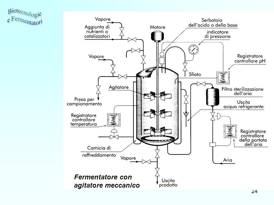 24 Fermentatore con agitatore meccanico