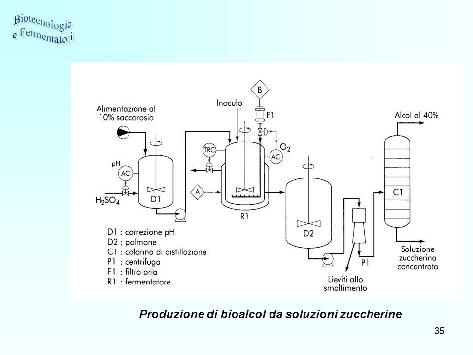 35 Produzione di bioalcol da soluzioni zuccherine