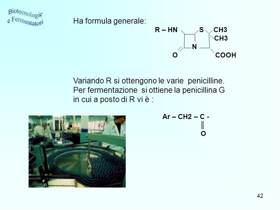 42 Ha formula generale: R – HN S CH3 CH3 N O COOH Variando R si ottengono le varie penicilline. Per fermentazione si ottiene la penicillina G in cui a