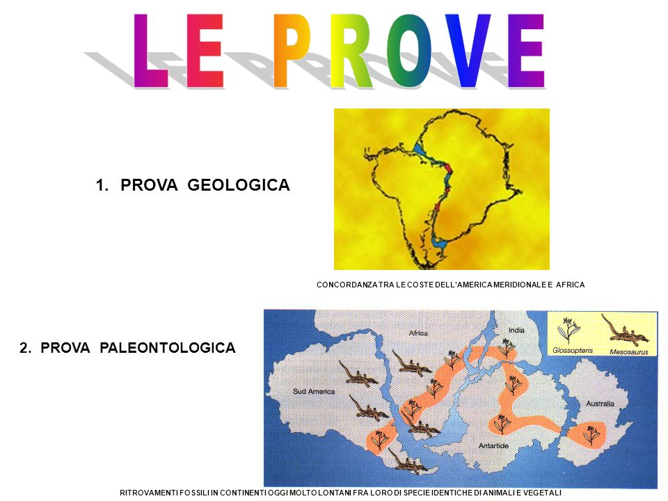 1.PROVA GEOLOGICA CONCORDANZA TRA LE COSTE DELLAMERICA MERIDIONALE E AFRICA 2. PROVA PALEONTOLOGICA RITROVAMENTI FOSSILI IN CONTINENTI OGGI MOLTO LONT