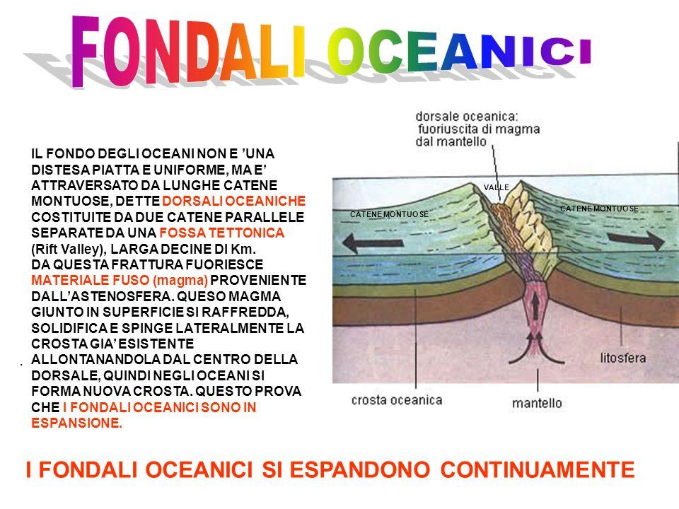 CATENE MONTUOSE VALLE I FONDALI OCEANICI SI ESPANDONO CONTINUAMENTE. IL FONDO DEGLI OCEANI NON E UNA DISTESA PIATTA E UNIFORME, MA E ATTRAVERSATO DA L
