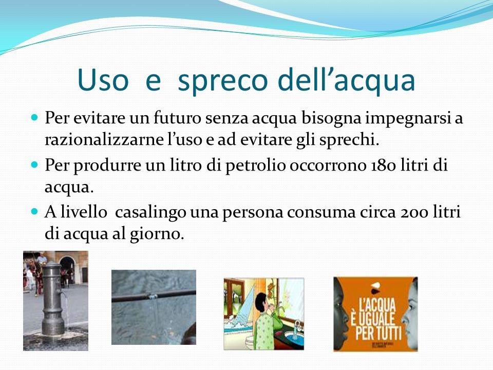 Uso e spreco dellacqua Per evitare un futuro senza acqua bisogna impegnarsi a razionalizzarne luso e ad evitare gli sprechi. Per produrre un litro di