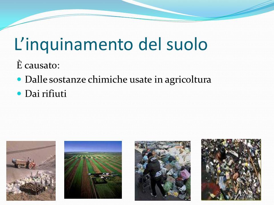 Linquinamento del suolo È causato: Dalle sostanze chimiche usate in agricoltura Dai rifiuti