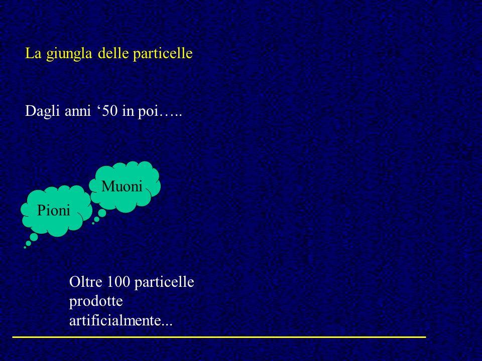 La giungla delle particelle Dagli anni 50 in poi….. Pioni Muoni Oltre 100 particelle prodotte artificialmente...