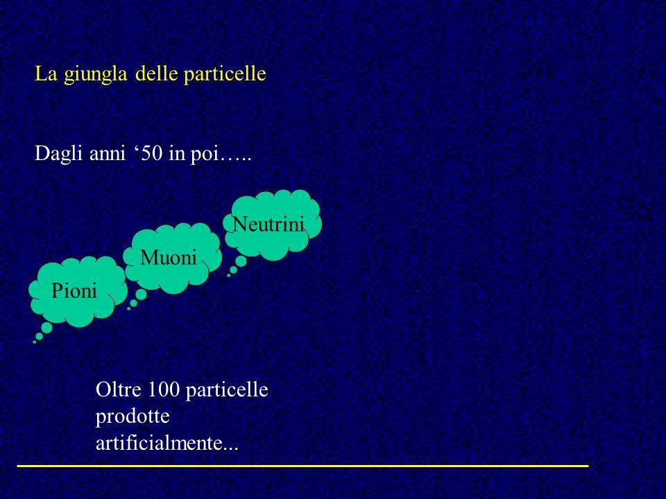 La giungla delle particelle Dagli anni 50 in poi….. Pioni Neutrini Muoni Oltre 100 particelle prodotte artificialmente...