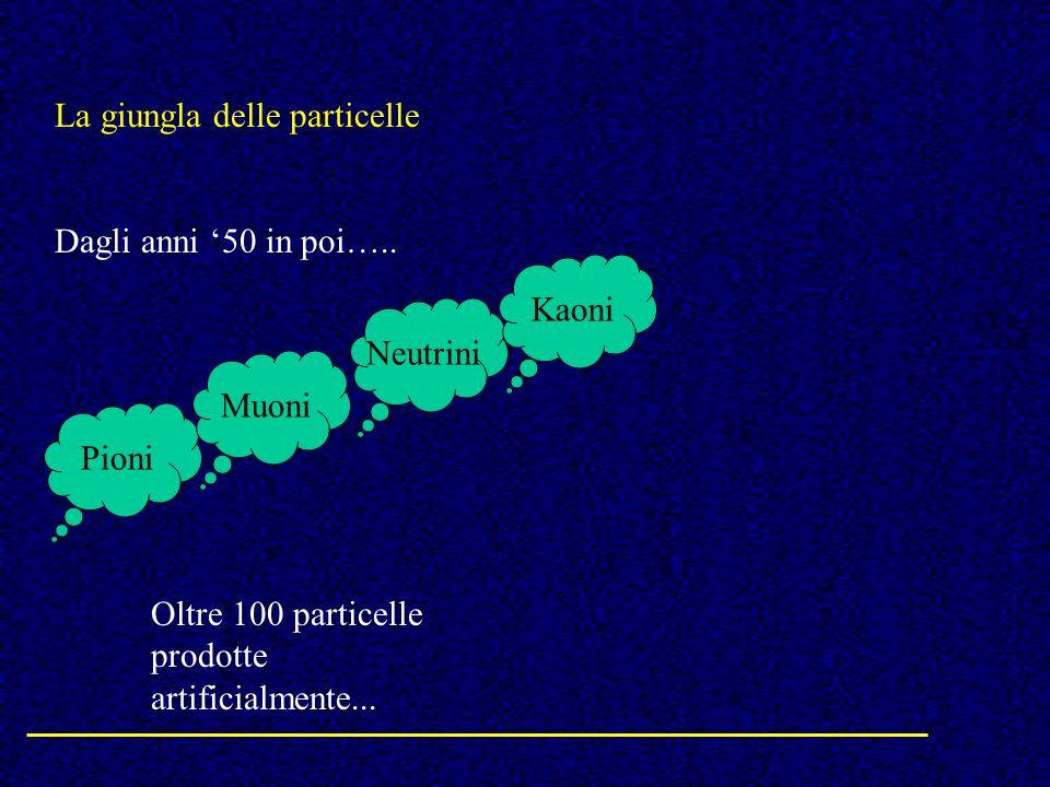 La giungla delle particelle Dagli anni 50 in poi….. Pioni Neutrini Muoni Kaoni Oltre 100 particelle prodotte artificialmente...