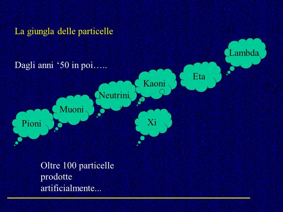 La giungla delle particelle Dagli anni 50 in poi….. Pioni Neutrini Muoni Kaoni Xi Eta Lambda Oltre 100 particelle prodotte artificialmente...