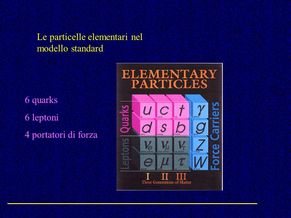 Le particelle elementari nel modello standard 6 quarks 6 leptoni 4 portatori di forza