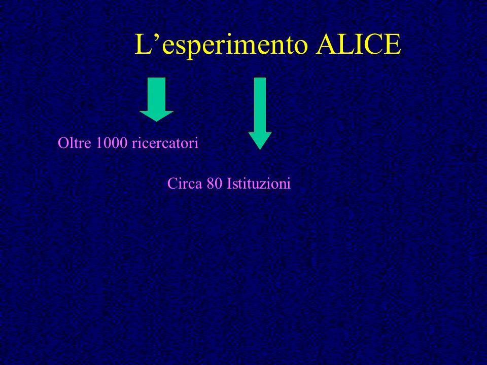 Lesperimento ALICE Oltre 1000 ricercatori Circa 80 Istituzioni