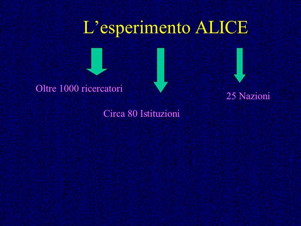 Lesperimento ALICE Oltre 1000 ricercatori Circa 80 Istituzioni 25 Nazioni