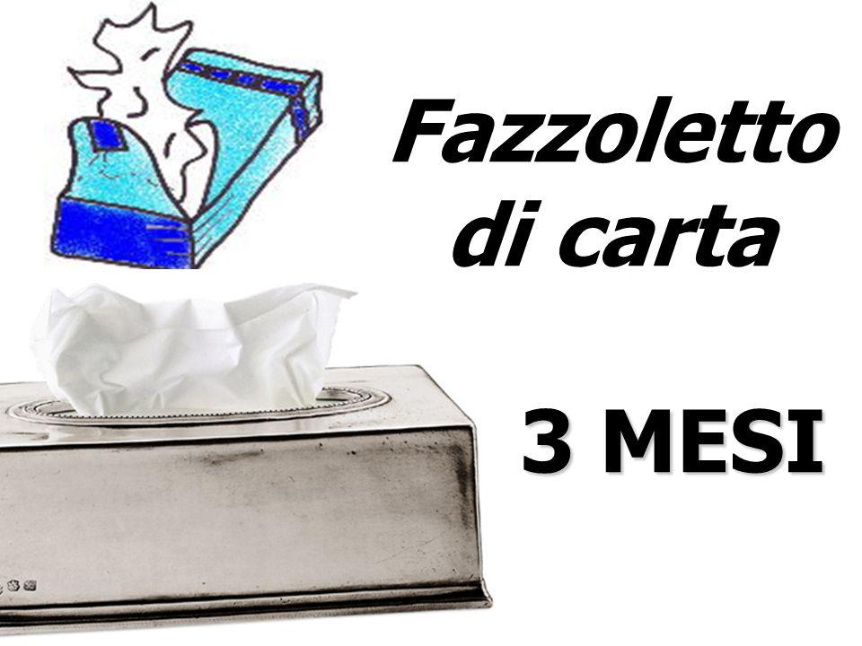 Fazzoletto di carta 3 MESI 3 MESI