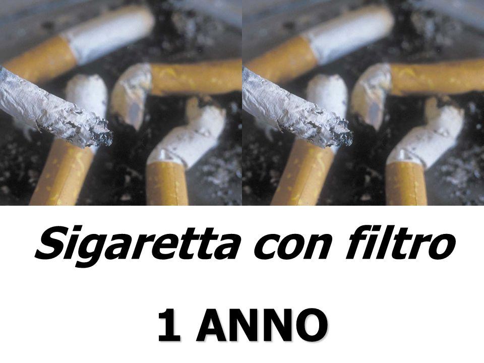 Sigaretta con filtro 1 ANNO