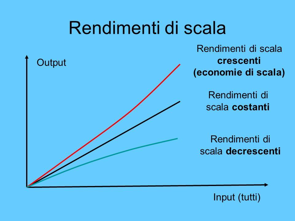Rendimenti di scala Output Input (tutti) Rendimenti di scala costanti Rendimenti di scala crescenti (economie di scala) Rendimenti di scala decrescent