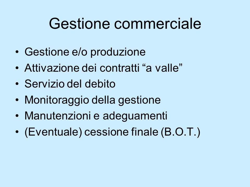 Gestione commerciale Gestione e/o produzione Attivazione dei contratti a valle Servizio del debito Monitoraggio della gestione Manutenzioni e adeguame