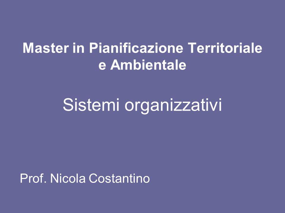 Master in Pianificazione Territoriale e Ambientale Sistemi organizzativi Prof. Nicola Costantino