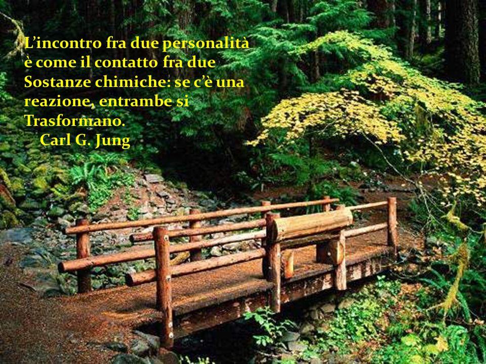 Tutte le battaglie, comprese quelle che perdiamo, Servono ad insegnarci qualcosa. Paulo Coelho