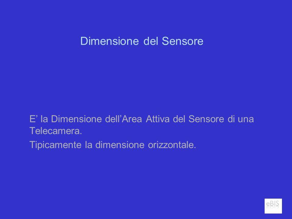 Dimensione del Sensore E la Dimensione dellArea Attiva del Sensore di una Telecamera. Tipicamente la dimensione orizzontale.