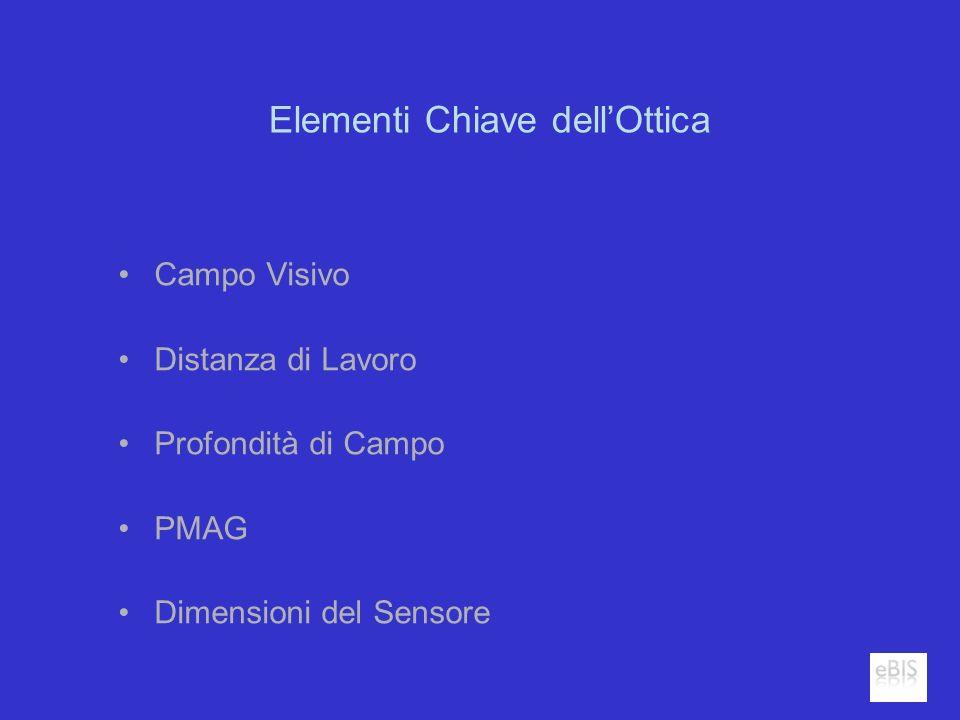 Elementi Chiave dellOttica Campo Visivo Distanza di Lavoro Profondità di Campo PMAG Dimensioni del Sensore