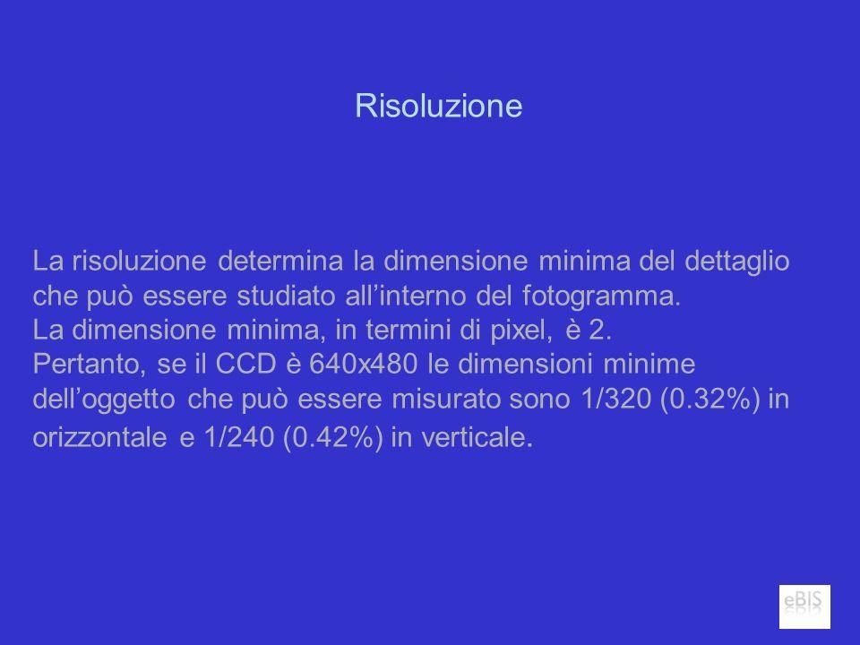 Risoluzione La risoluzione determina la dimensione minima del dettaglio che può essere studiato allinterno del fotogramma. La dimensione minima, in te