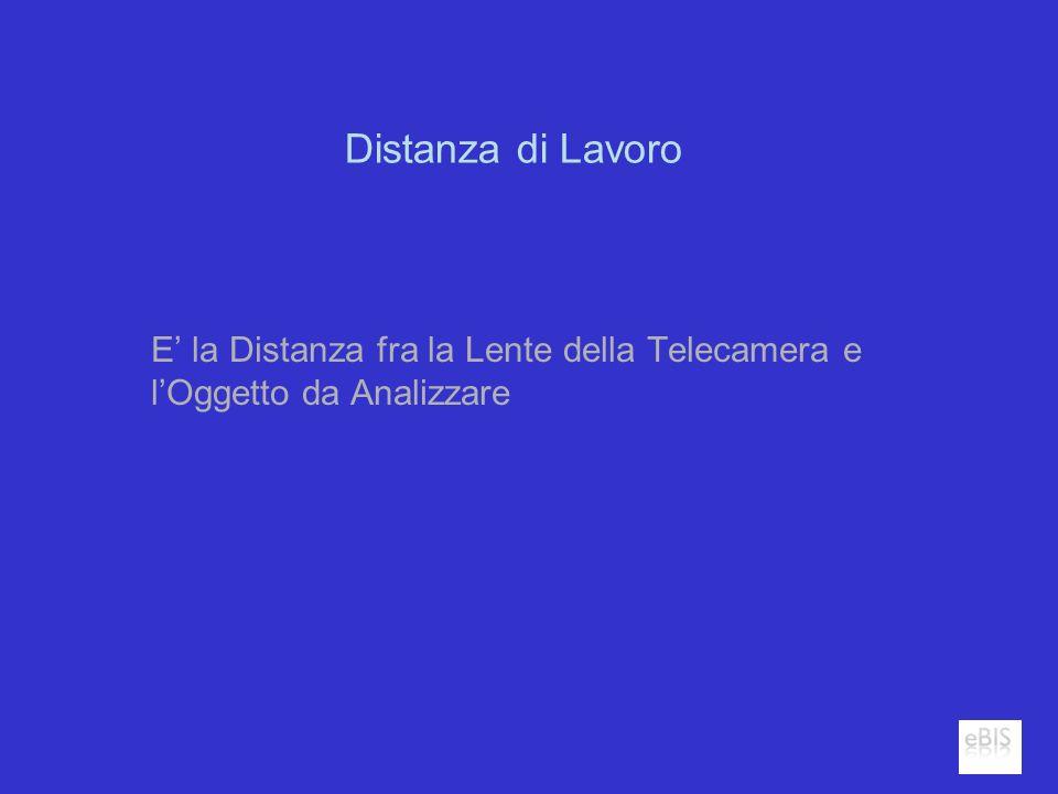 Distanza di Lavoro E la Distanza fra la Lente della Telecamera e lOggetto da Analizzare