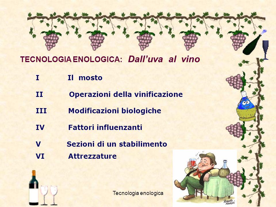 Tecnologia enologica1 TECNOLOGIA ENOLOGICA: Dalluva al vino I Il mosto II Operazioni della vinificazione III Modificazioni biologiche IV Fattori influ