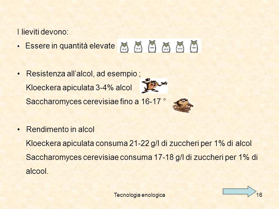Tecnologia enologica16 I lieviti devono: Essere in quantità elevate Resistenza allalcol, ad esempio ; Kloeckera apiculata 3-4% alcol Saccharomyces cer