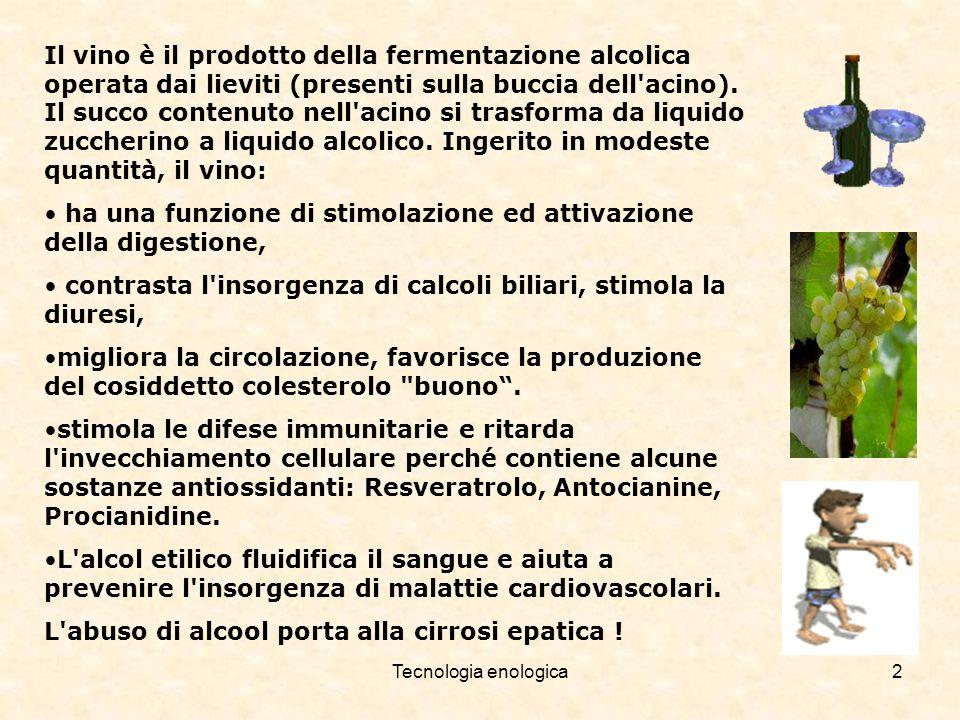 Tecnologia enologica2 Il vino è il prodotto della fermentazione alcolica operata dai lieviti (presenti sulla buccia dell'acino). Il succo contenuto ne