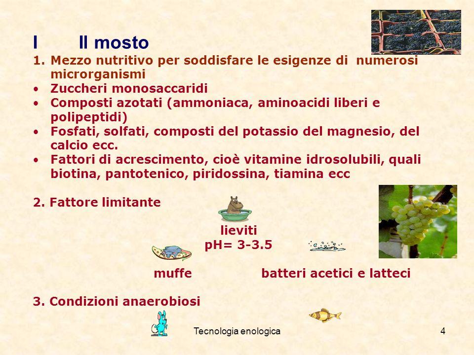 Tecnologia enologica4 I Il mosto 1.Mezzo nutritivo per soddisfare le esigenze di numerosi microrganismi Zuccheri monosaccaridi Composti azotati (ammon