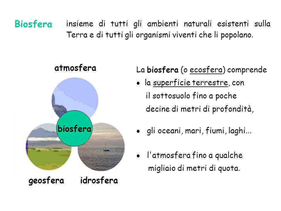 geosfera idrosfera atmosfera biosfera insieme di tutti gli ambienti naturali esistenti sulla Terra e di tutti gli organismi viventi che li popolano. L