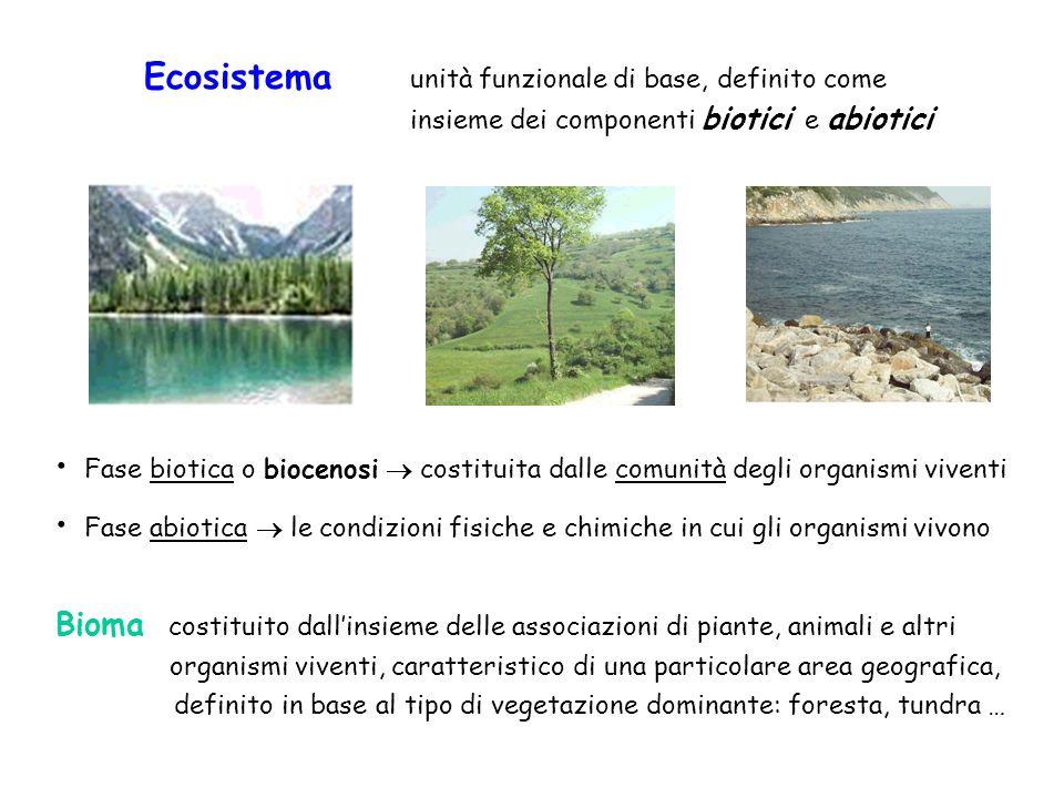 Ecosistema unità funzionale di base, definito come insieme dei componenti biotici e abiotici Fase biotica o biocenosi costituita dalle comunità degli