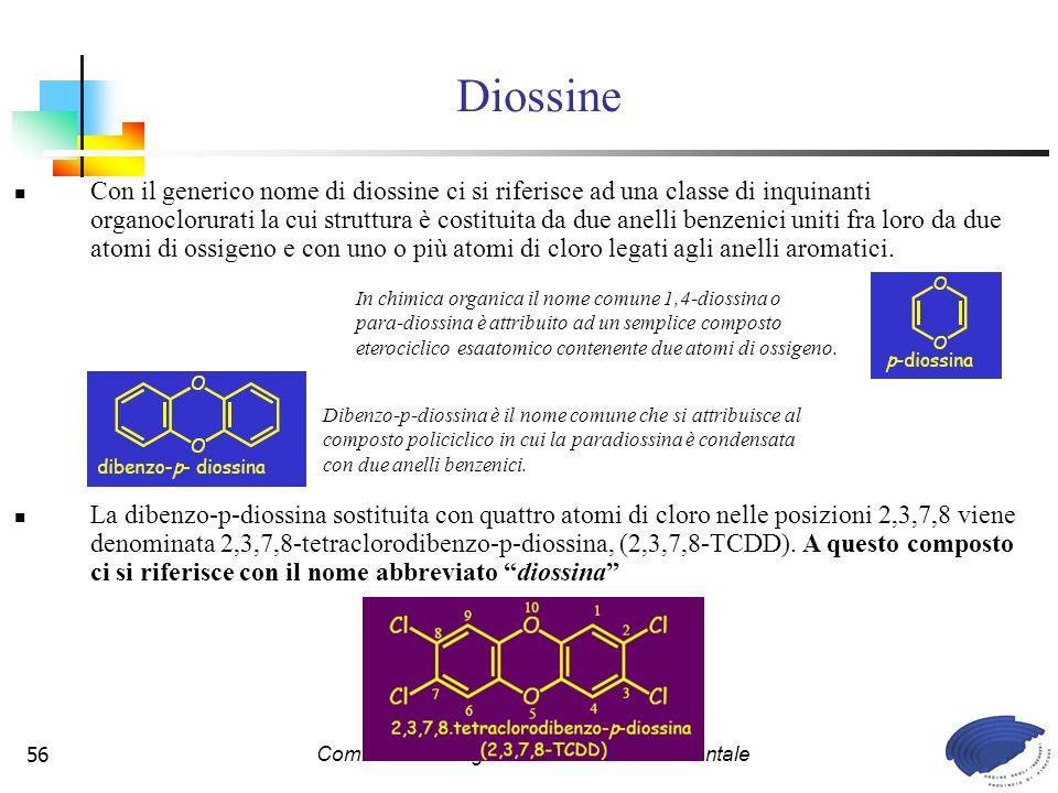 Commissione Legislazione e Tutela Ambientale56 Con il generico nome di diossine ci si riferisce ad una classe di inquinanti organoclorurati la cui struttura è costituita da due anelli benzenici uniti fra loro da due atomi di ossigeno e con uno o più atomi di cloro legati agli anelli aromatici.