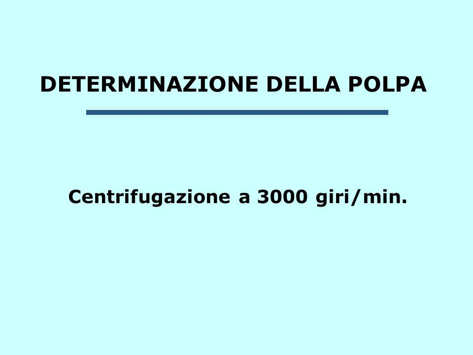 DETERMINAZIONE DELLA POLPA Centrifugazione a 3000 giri/min.