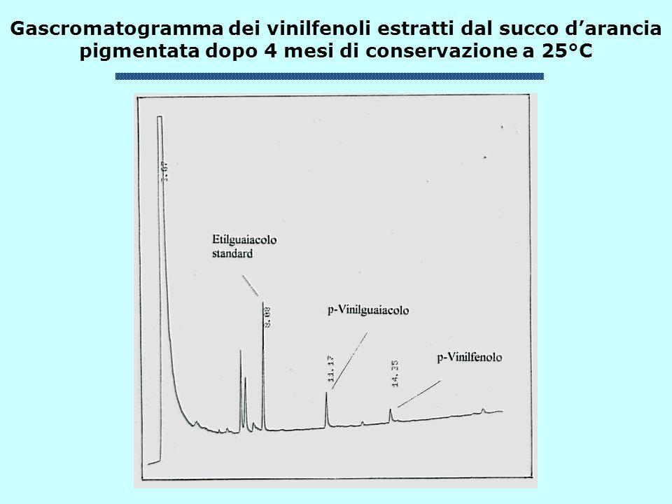 Gascromatogramma dei vinilfenoli estratti dal succo darancia pigmentata dopo 4 mesi di conservazione a 25°C