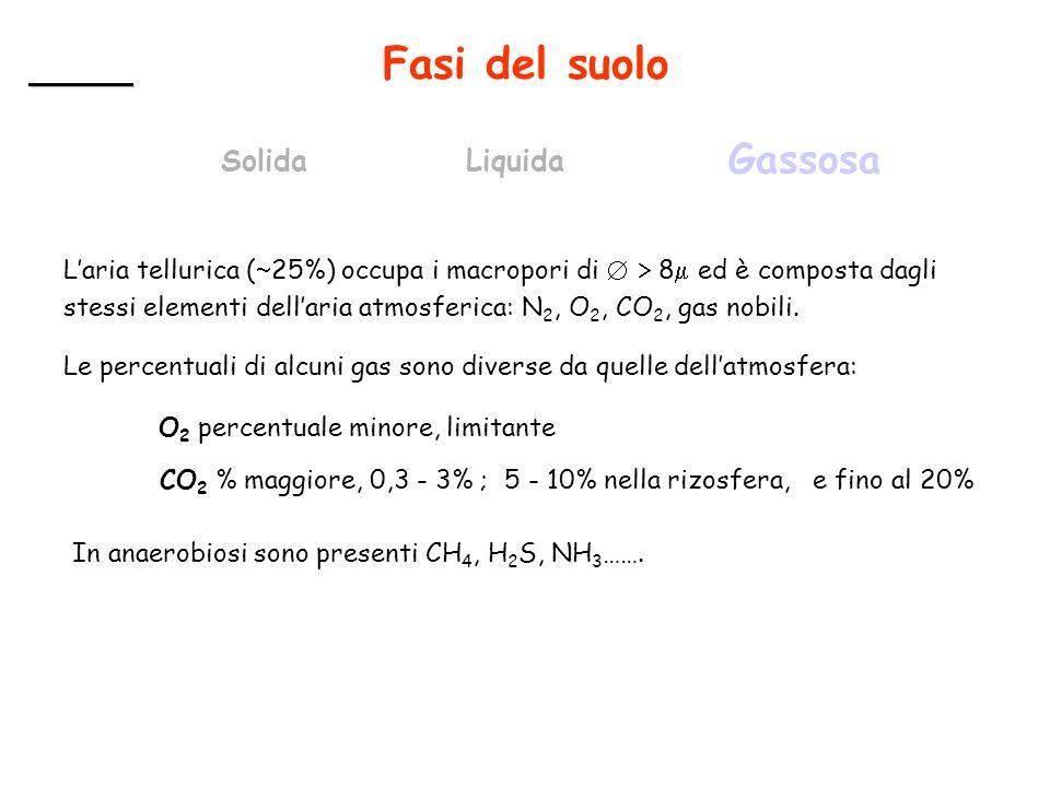Fasi del suolo SolidaLiquida Gassosa Laria tellurica ( 25%) occupa i macropori di 8 ed è composta dagli stessi elementi dellaria atmosferica: N 2, O 2