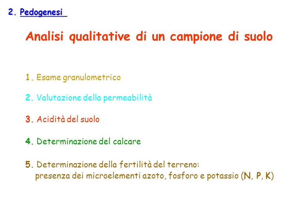 Analisi qualitative di un campione di suolo 1. Esame granulometrico 2. Valutazione della permeabilità 3. Acidità del suolo 4. Determinazione del calca