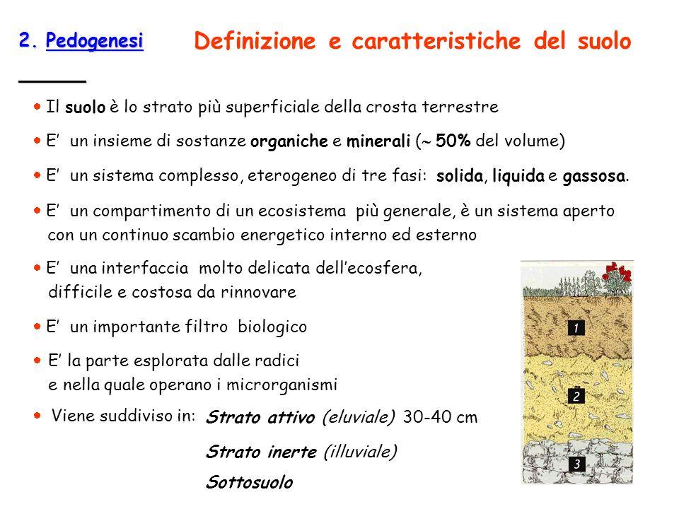 2. Pedogenesi Il suolo è lo strato più superficiale della crosta terrestre E un sistema complesso, eterogeneo di tre fasi: solida, liquida e gassosa.