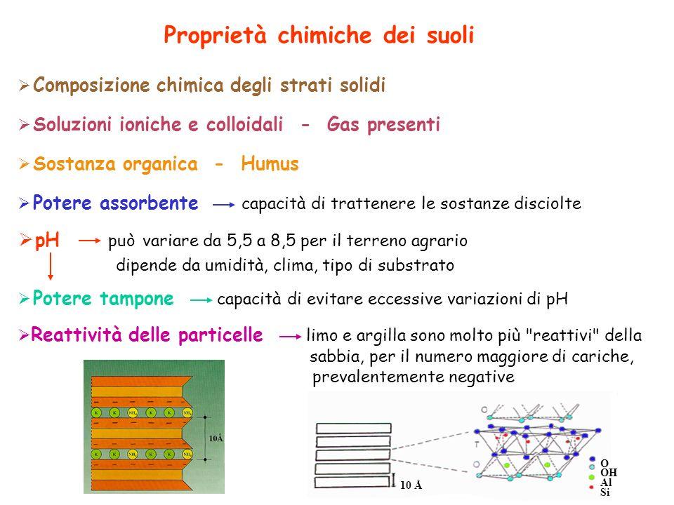 Composizione chimica degli strati solidi Soluzioni ioniche e colloidali - Gas presenti Sostanza organica - Humus Potere assorbente capacità di tratten