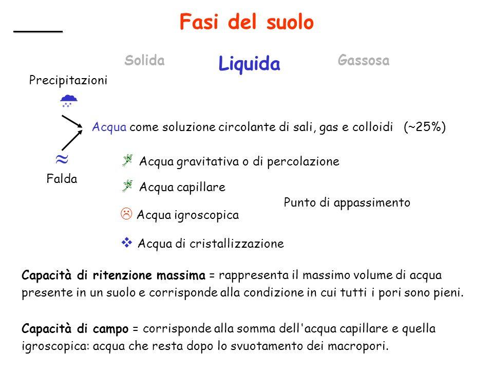 Fasi del suolo Solida Liquida Gassosa Acqua come soluzione circolante di sali, gas e colloidi ( 25%) Precipitazioni Falda Acqua gravitativa o di perco