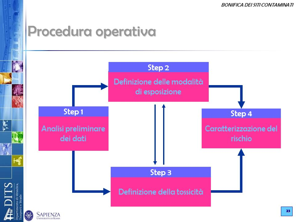 BONIFICA DEI SITI CONTAMINATI 23 Procedura operativa Analisi preliminare dei dati Definizione delle modalità di esposizione Definizione della tossicit