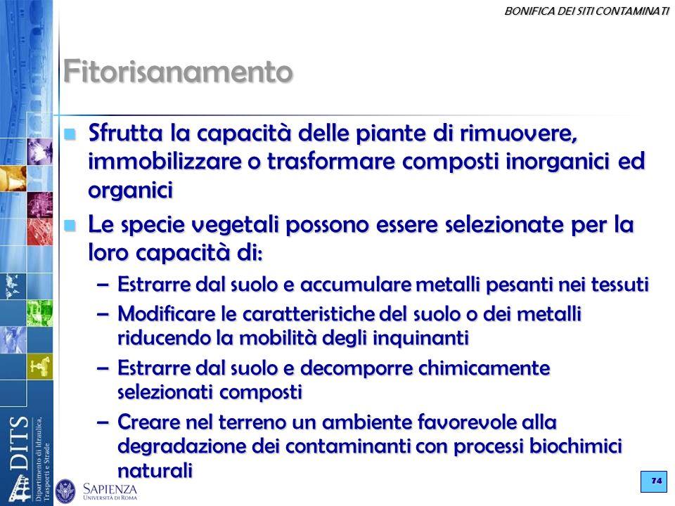 BONIFICA DEI SITI CONTAMINATI 74 Fitorisanamento Sfrutta la capacità delle piante di rimuovere, immobilizzare o trasformare composti inorganici ed org