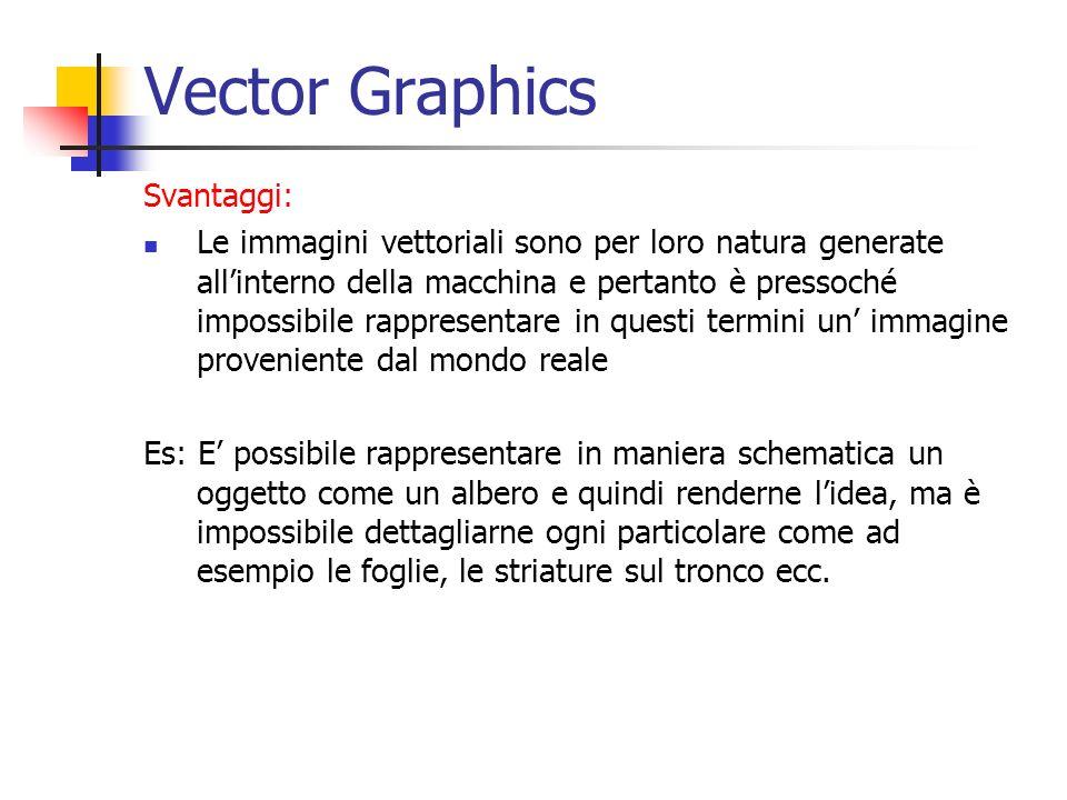 Vector Graphics Svantaggi: Le immagini vettoriali sono per loro natura generate allinterno della macchina e pertanto è pressoché impossibile rappresen