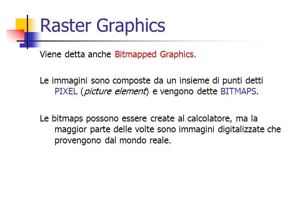 Raster Graphics Viene detta anche Bitmapped Graphics. Le immagini sono composte da un insieme di punti detti PIXEL (picture element) e vengono dette B