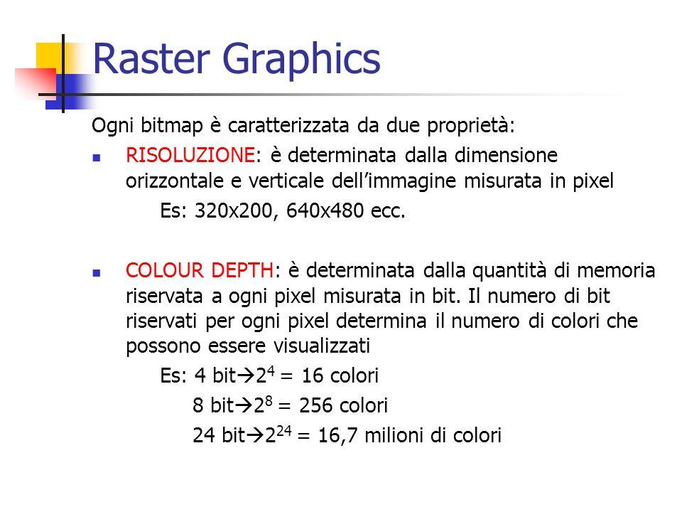 Raster Graphics Ogni bitmap è caratterizzata da due proprietà: RISOLUZIONE: è determinata dalla dimensione orizzontale e verticale dellimmagine misura
