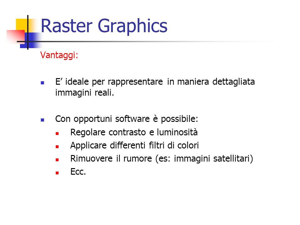 Raster Graphics Vantaggi: E ideale per rappresentare in maniera dettagliata immagini reali. Con opportuni software è possibile: Regolare contrasto e l