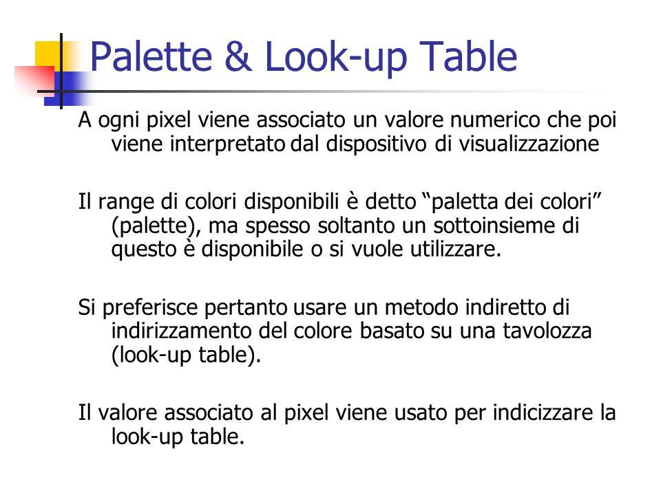 Palette & Look-up Table A ogni pixel viene associato un valore numerico che poi viene interpretato dal dispositivo di visualizzazione Il range di colo