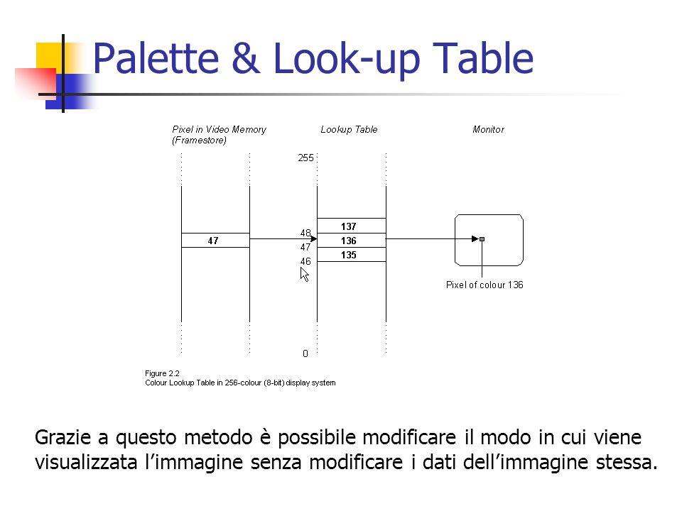 Palette & Look-up Table Grazie a questo metodo è possibile modificare il modo in cui viene visualizzata limmagine senza modificare i dati dellimmagine