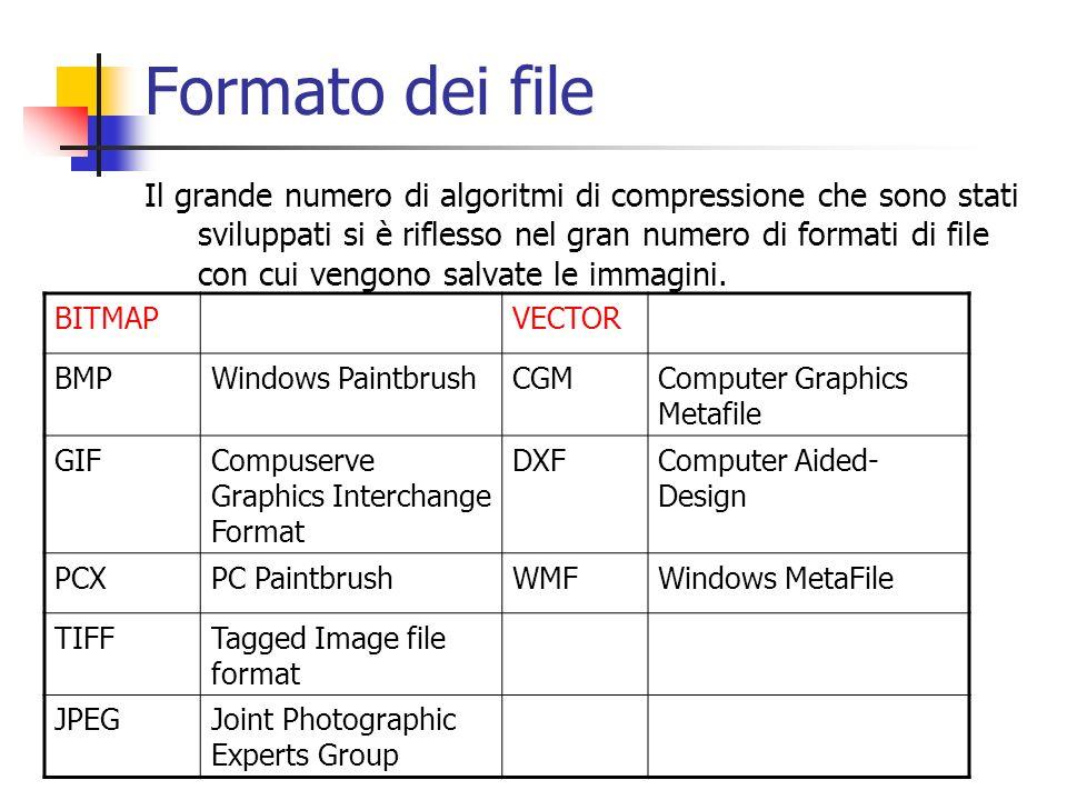 Formato dei file Il grande numero di algoritmi di compressione che sono stati sviluppati si è riflesso nel gran numero di formati di file con cui veng