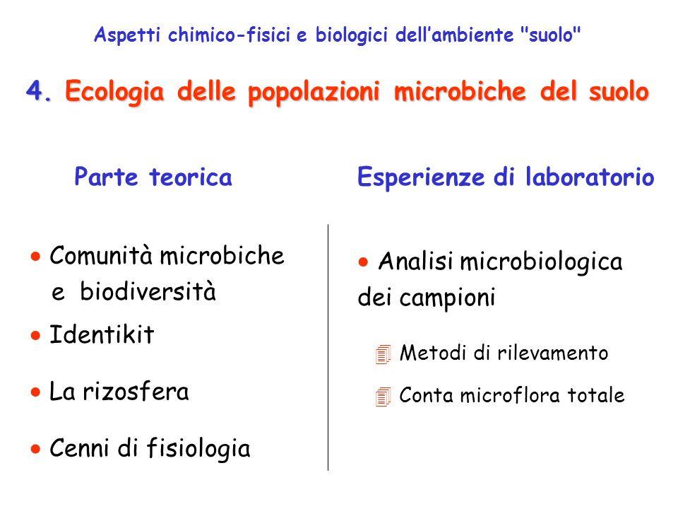 Nella rizosfera la biomassa microbica raggiunge valori molto più elevati che in altre aree di suolo Tra le radici e le popolazioni microbiche della rizosfera possono instaurarsi diverse interazioni simbiontiche: Effetto rizosfera simbiosi mutualistica = protocooperazione = simbiosi mutualistiche con batteri e funghi presenti nella rizosfera associazione vantaggiosa necessaria alla sopravvivenza di entrambe le componenti associazione vantaggiosa ma non necessaria Leguminose + Funghi micorrizici VAM (vescicular arbuscular mycorrizhae) ECM (ectomycorrizhae) Moltissime piante e alberi ( 90%) + Rizobi (batteri azotofissatori)
